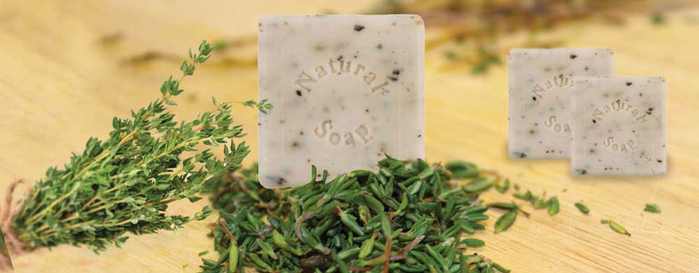 Thyme Soap Square